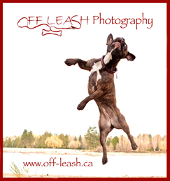 Dog photography blog from Off-leash.ca logo